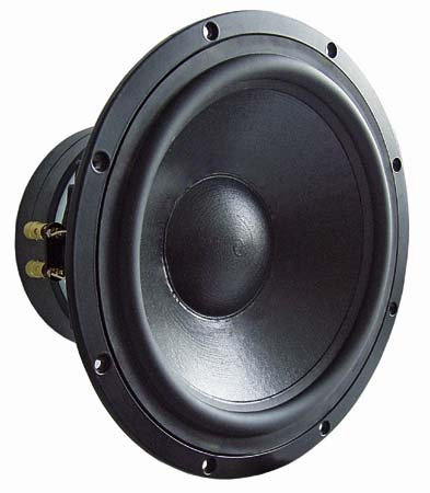 Visaton TIW300 - 8 Ohm High End Woofer.